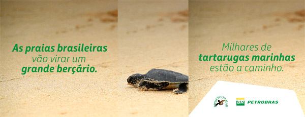 tamar-blog.jpg