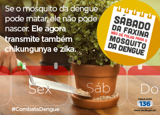 combate-aedes-blog.png